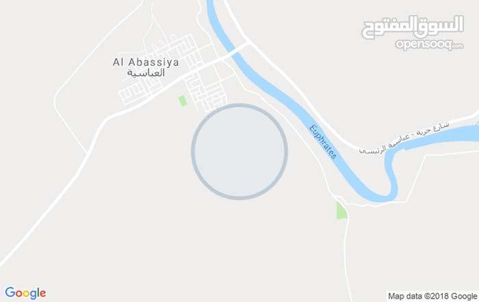 كوفه ناحيه العباسيه/ عربيات الساده طابو صرف