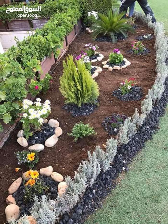 خدمات الحدائق(زراعه،تنسيق،ازالة الاشجار الغير مرغوب بها)