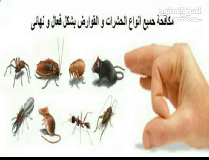 متخصصون ف مكافحة الحشرات