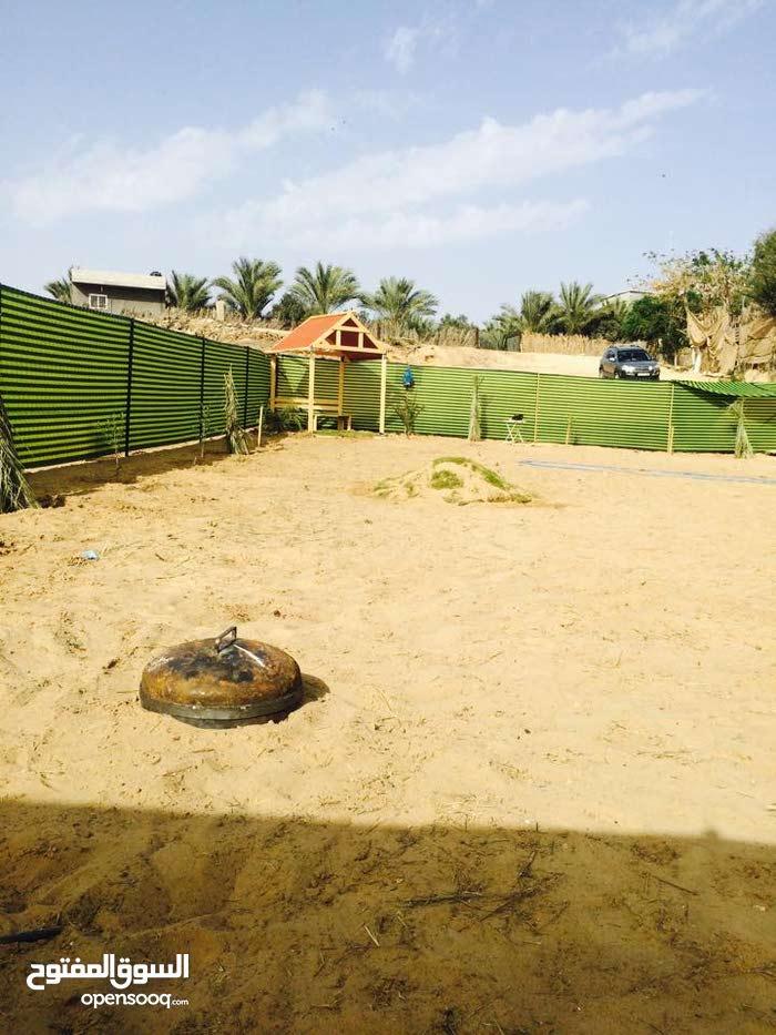 للبيع 270 ارض على بحر دير البلح سعر المتر 67 دينار مشجرة طابو