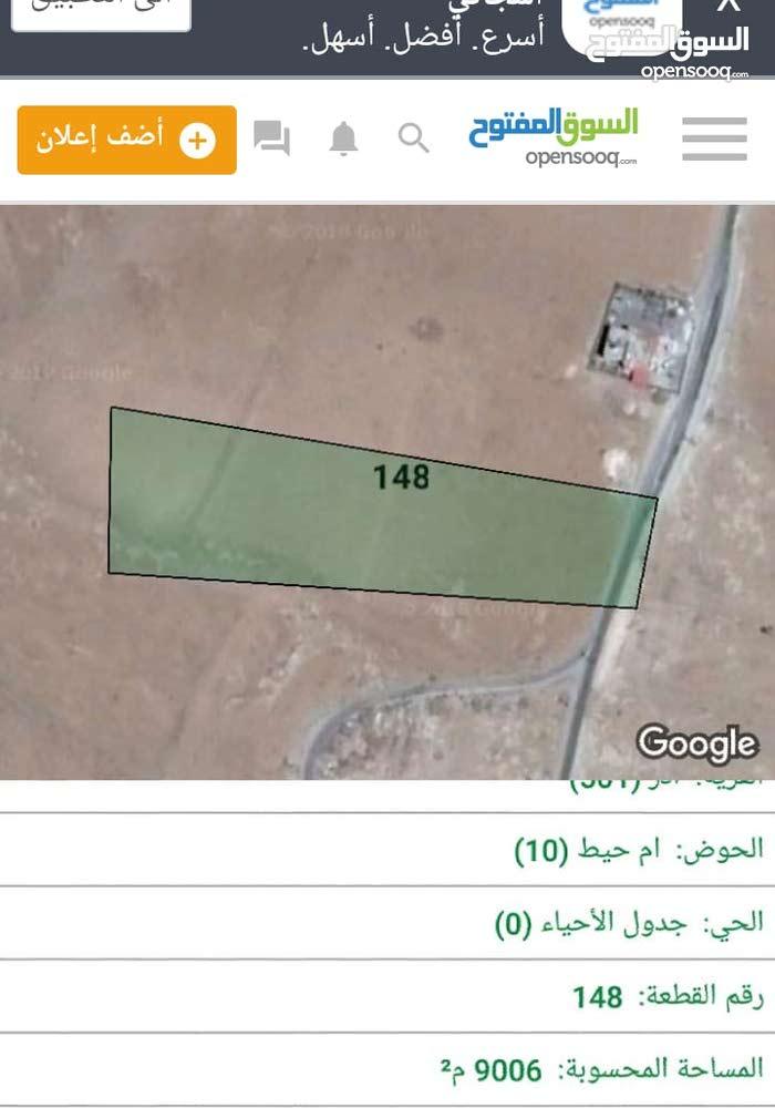 قطعتين ارض كل قطعه مساحتها 9 دونمات الكرك ادر