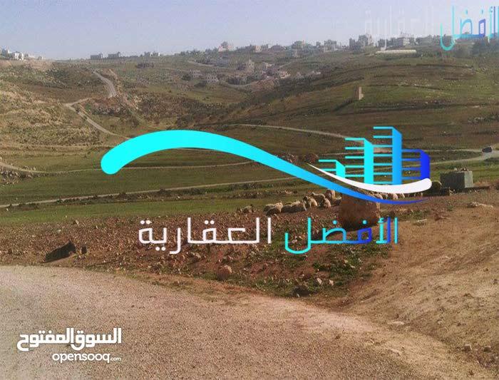 ارض  للبيع في عمان الموقر 4770م على شارع معبد