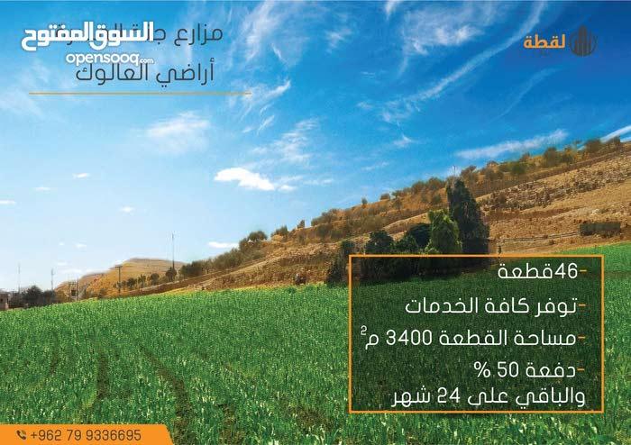 مزرعتك الريفية الهادئة بأقل الاسعار وبالأقساط (اراضي العالوك)