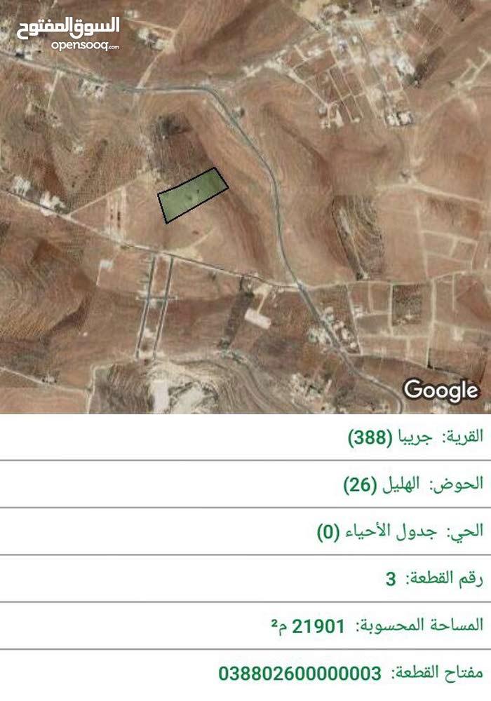 ارض زراعيه  بمنطقه جريبا 21 دونم للبيع