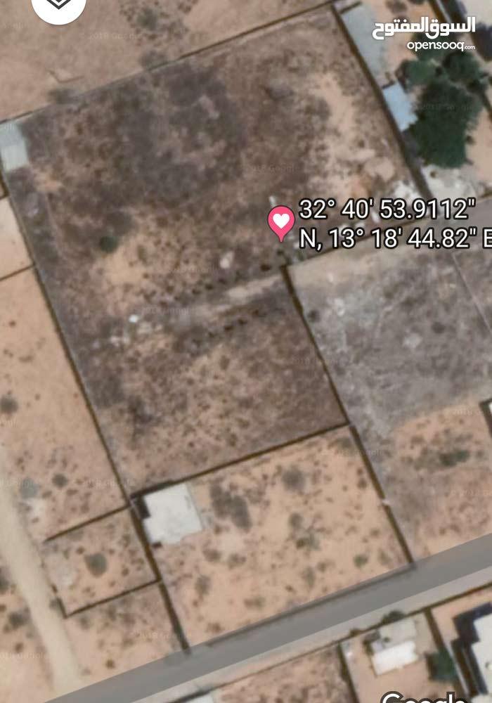 ارض نصف هكتار في القيو خلف مسجد التوحيد