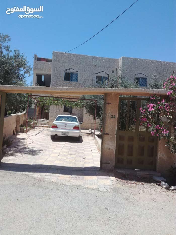 الطفيلة -العيص-الزريقيات-مقابل الجامعه الطفيله
