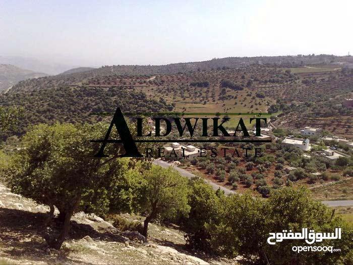 ارض مميزة للبيع في منطقة بدر حوض الحديب , مساحة الارض 4537 م