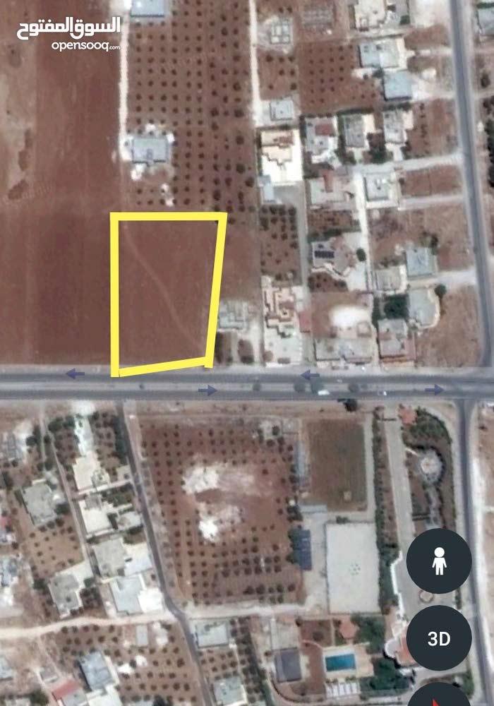 مقابل قصر موسى ابو حسان