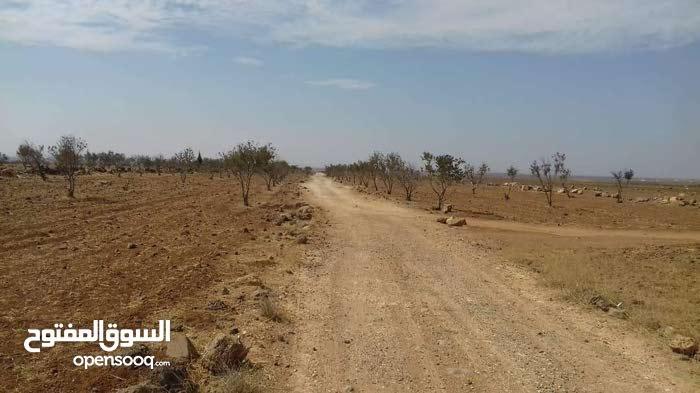 ارض للبيع طريق بصرى الشام جمرين