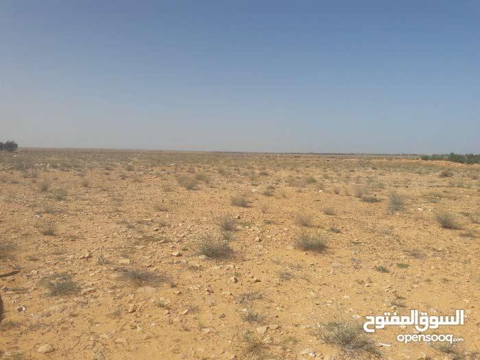 4.5هكتار في منطقة الاقواس على الطريق مبـــــاشره